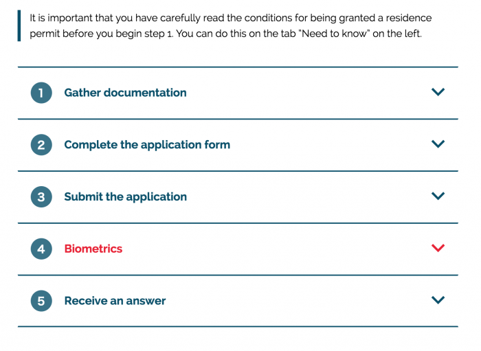 1〜5の申請ステップ(デンマーク入国局のワーホリ申請ページ)