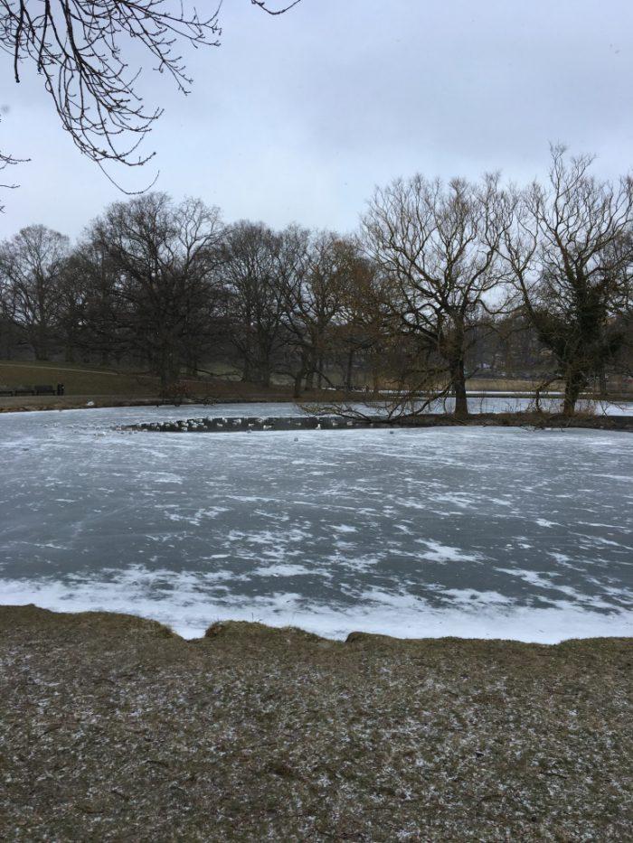 デンマークの寒さ