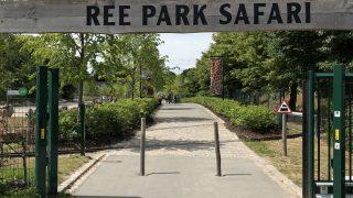 デンマークのサファリパーク「REE PARK」に!