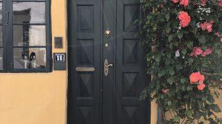 花が綺麗な玄関(ランゲランの宿)