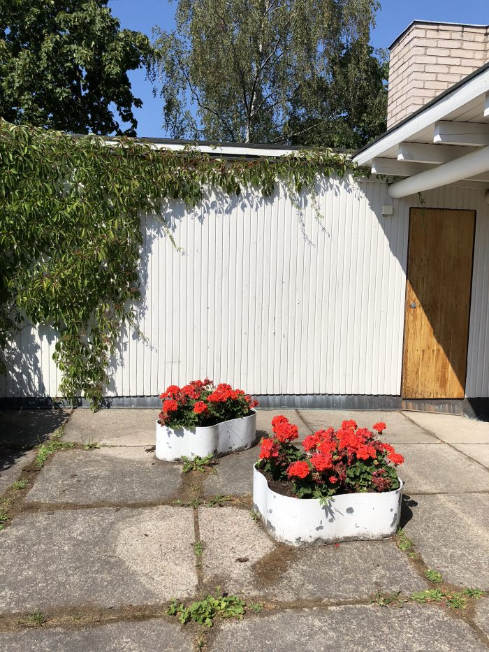 中庭にアアルトベースの形をした植木鉢(アアルト自邸)
