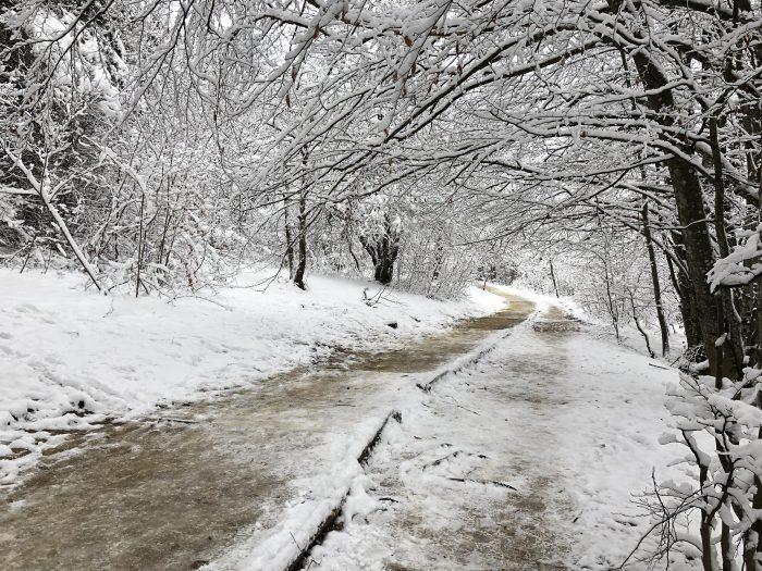道が凍ってスリッピー・・・
