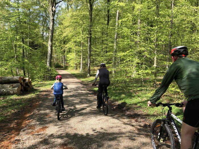 森の中をマウンテンバイクで。6歳の女の子も一人で参加してました。可愛い。