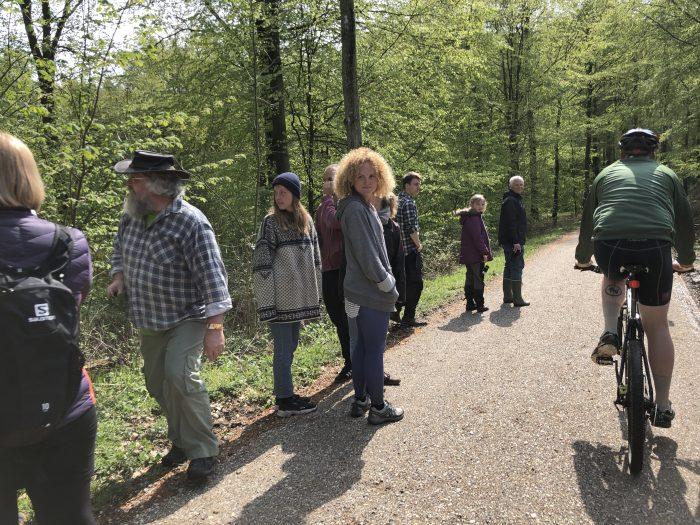 鳥のエキスパートと森を回る鳥ツアー