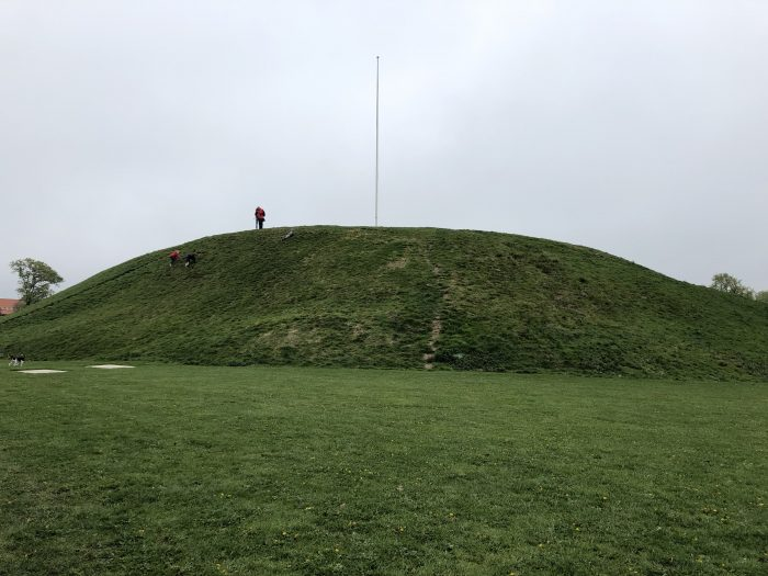 でっかい墳墓。デンマーク最初の王さまのものなんだとか。