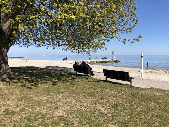 ベルビュービーチでゆっくり過ごす人たち。